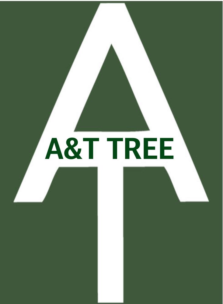 A&T Tree: Raeford, NC