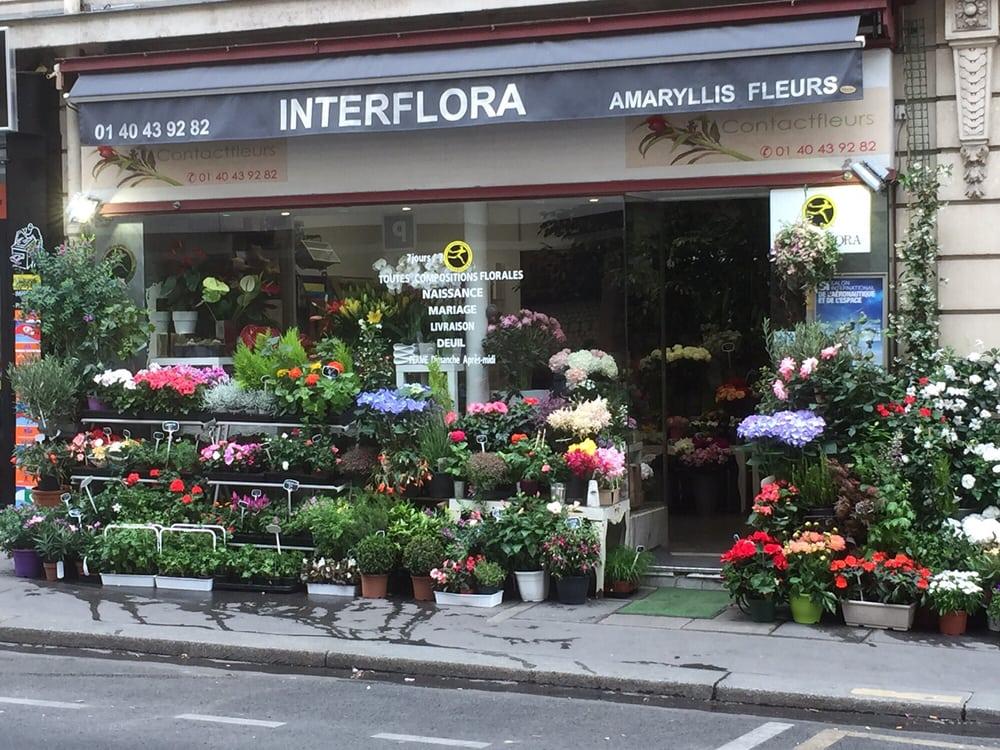 Amaryllis fleurs interflora 18 photos fleuriste 230 for Amaryllis fleuriste