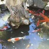 Photo Of Fairytale Town   Sacramento, CA, United States. Japanese Garden
