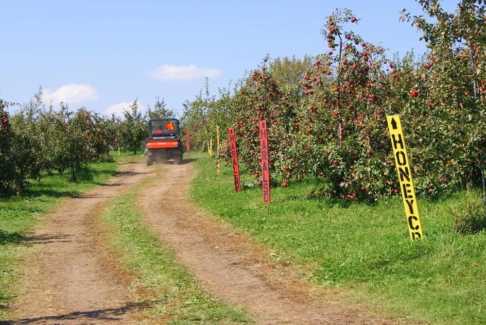 Sekapp Orchard