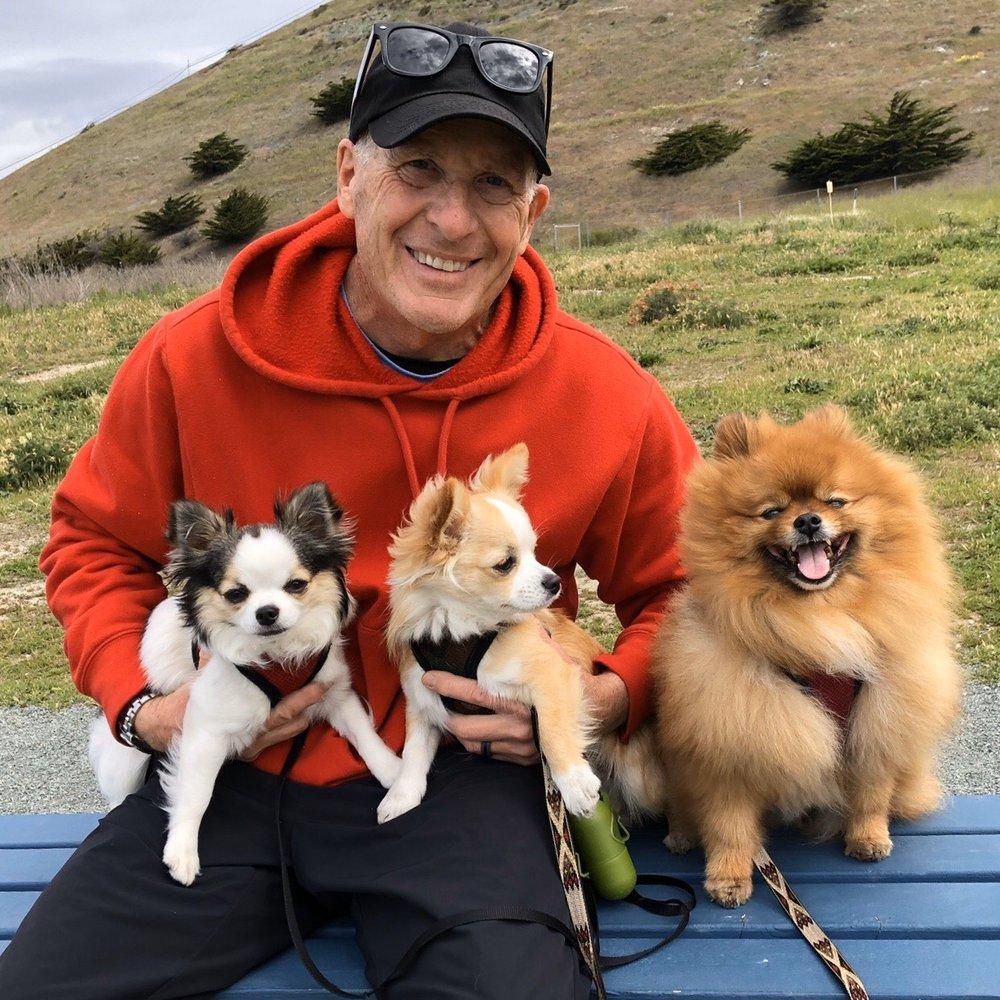 Los Osos Pet Hospital: 2239 Bayview Heights Dr, Los Osos, CA