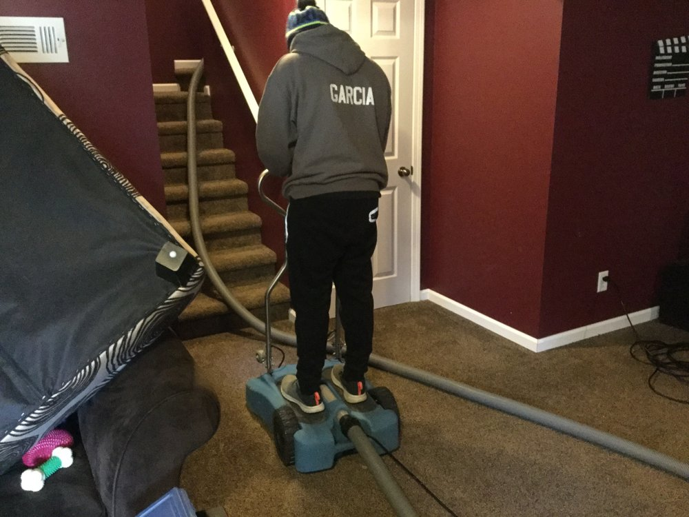 OG Professional Carpet Care: 13725 Ironwood Dr NW, Grand Rapids, MI