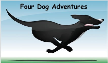 Four Dog Adventures