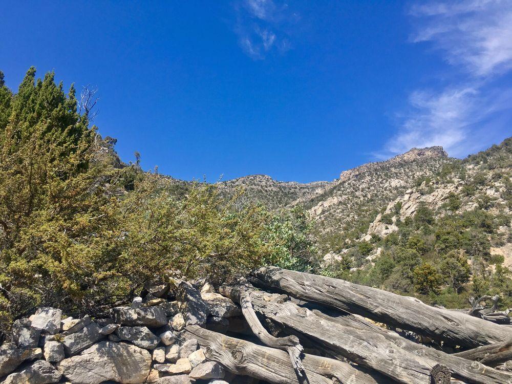 La Madre Mountain Wilderness: Mt Charleston N, Las Vegas, NV