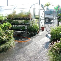 northwest seed \u0026 pet 17 photos \u0026 14 reviews nurseriesphoto of northwest seed \u0026 pet spokane, wa, united states