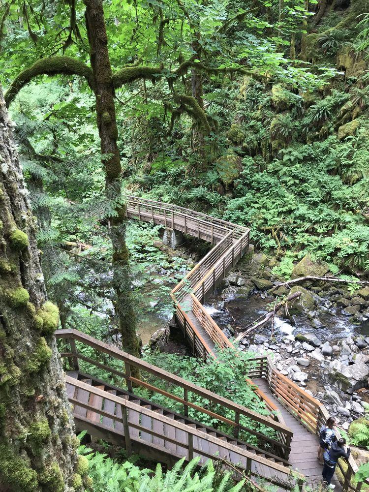 Mcdowell Creek Falls: 43170 McDowell Creek Dr, Lebanon, OR
