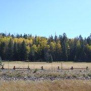 Photo Of Hannagan Meadow Lodge Alpine Az United States