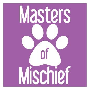 Masters of Mischief Dog Training: Berthoud, CO