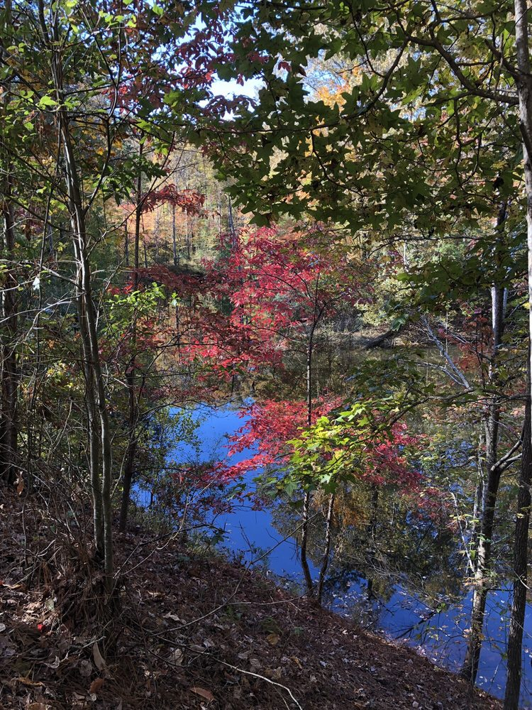 Bonita Lakes Park: 418 Lake Dr, Meridian, MS