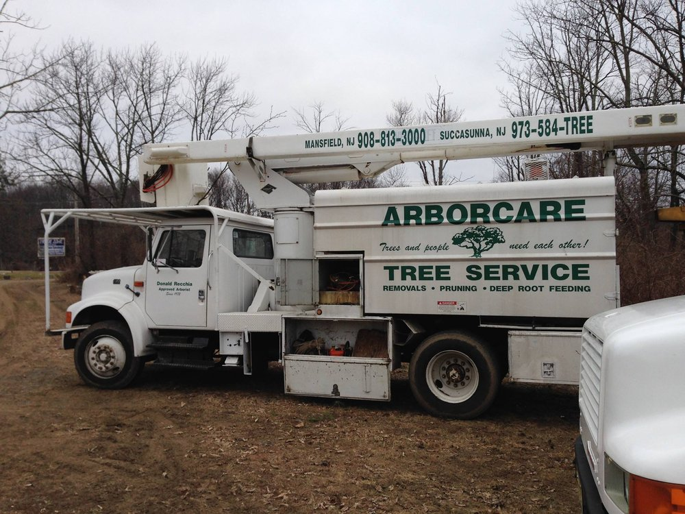 J & Z Tree Experts: Port Murray, NJ
