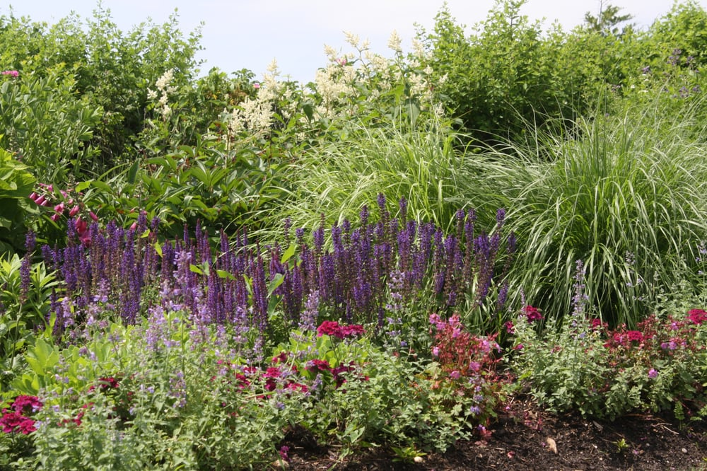 C. Whitmore Gardens: 26 Montauk Hwy, Amagansett, NY