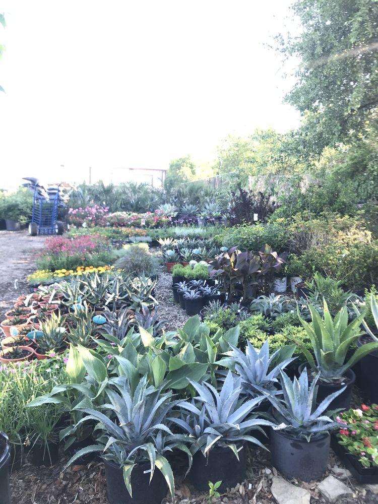 Grow Wild Greenery: 5570 Huddleston St, Haltom City, TX