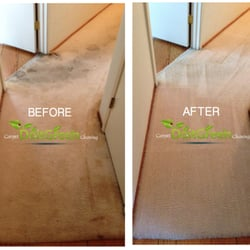Do It Green Carpet Cleaning 51 Photos Amp 105 Reviews