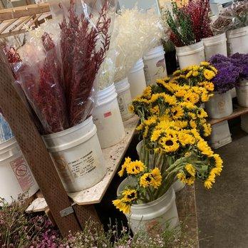 Photo of Orange County Wholesale Flowers - Santa Ana, CA, United States