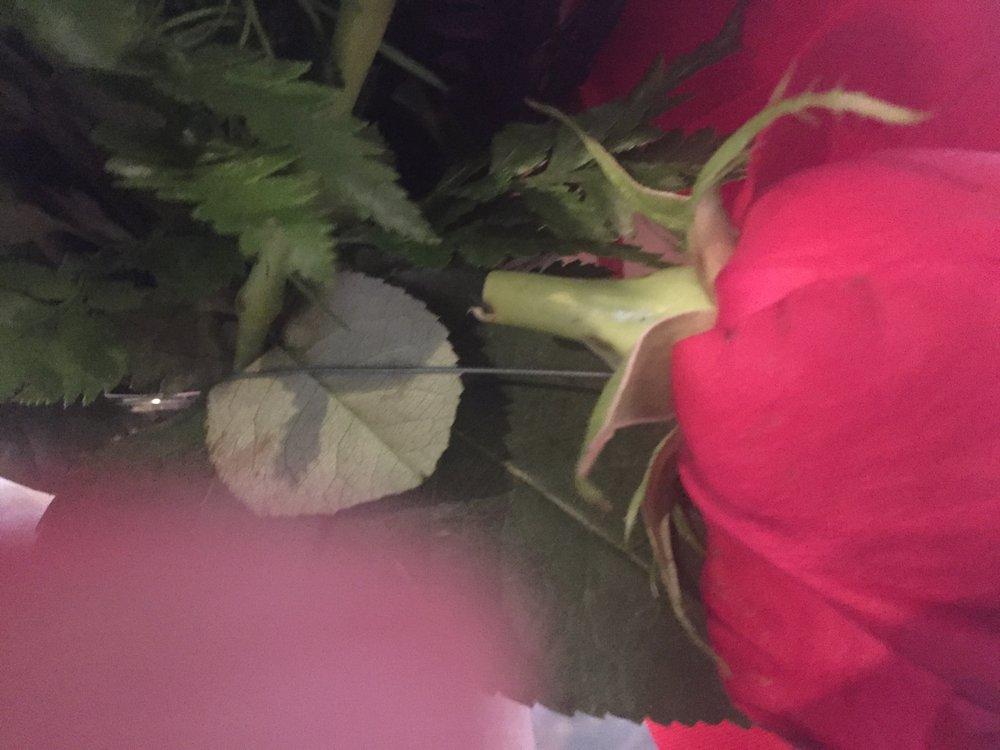 Dixon Floral: 208 W 2nd St, Dixon, MO