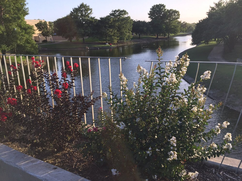 Rawhide Park Walking Trails: 13450 Josey Ln, Farmers Branch, TX