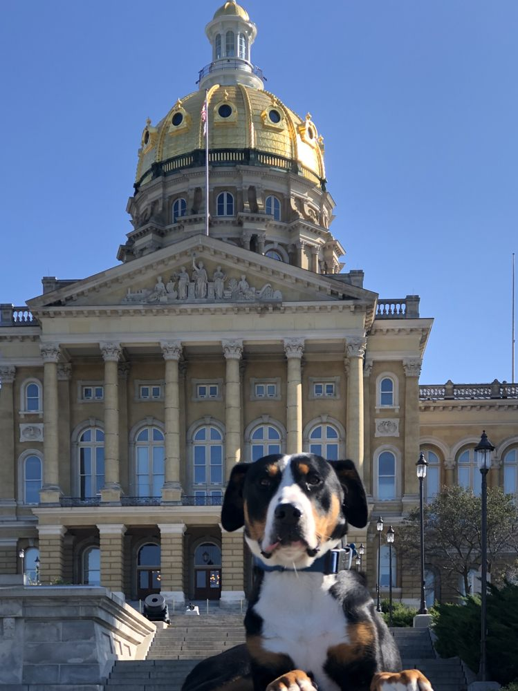 All Dogs Unleashed - Des Moines: Des Moines, IA