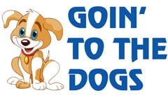 Goin'to the Dogs: 261423 Hwy 101, Sequim, WA