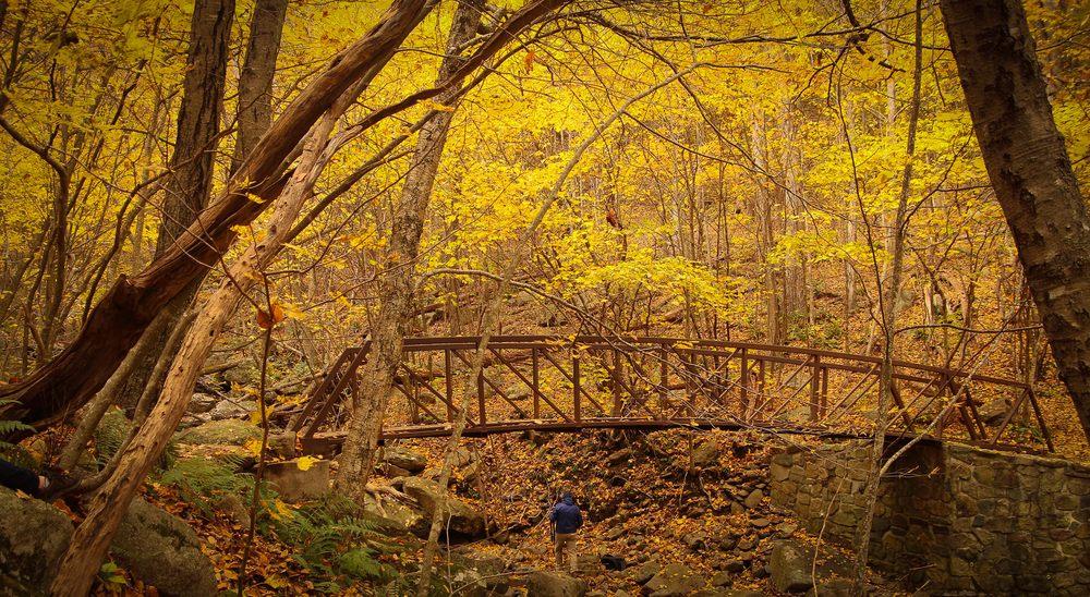 Scott Turnmeyer Photography: Middletown, VA