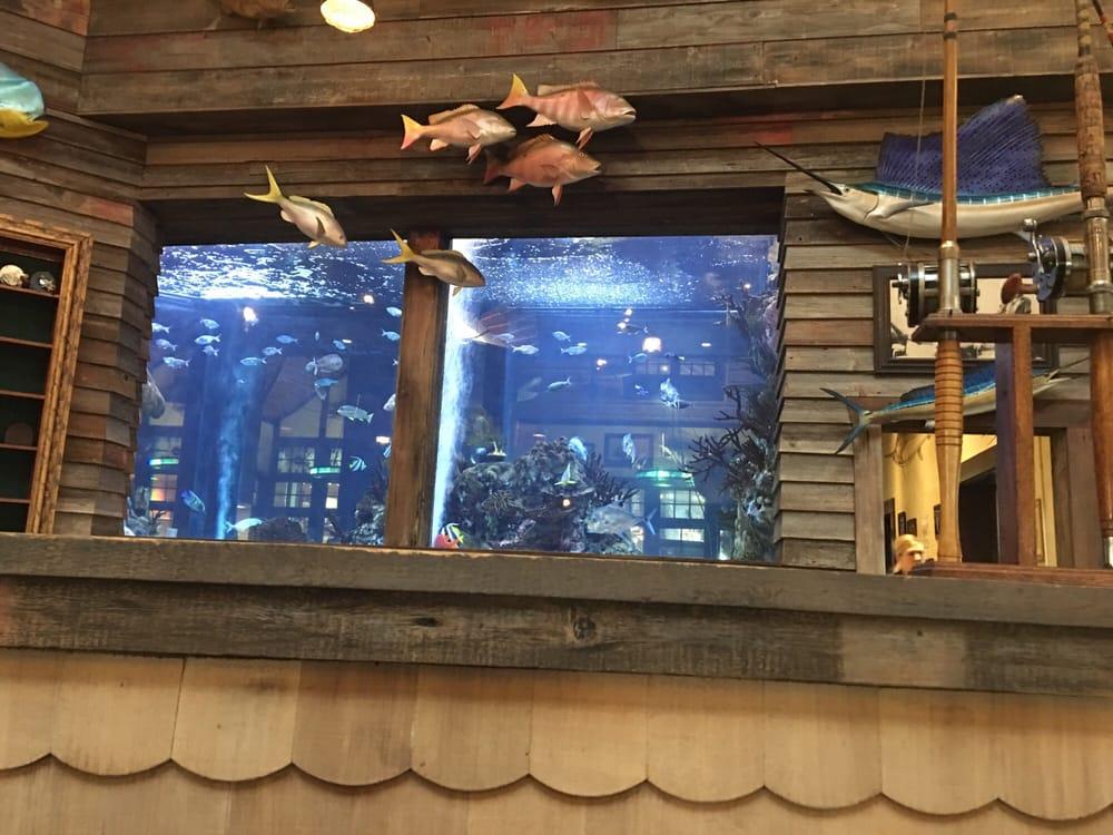Islamorada fish company restaurant 359 photos 423 for Islamorada fish company menu
