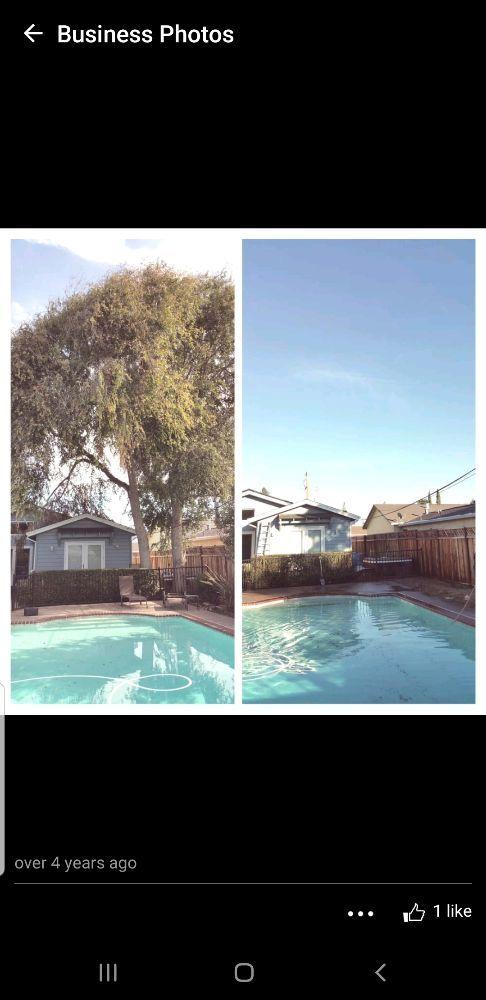 Cut It Right Tree Service