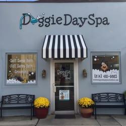 Doggie day spa grooming self serve salon 13 photos 30 photo of doggie day spa grooming self serve salon columbus oh united solutioingenieria Gallery