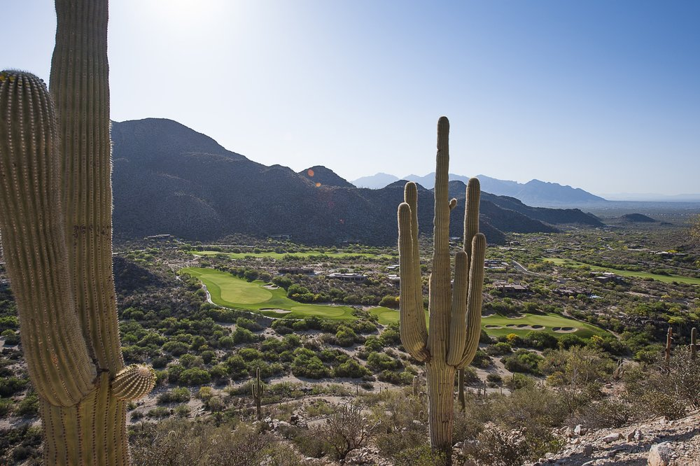 The Gallery Golf Club: 14000 N Dove Mountain Blvd, Marana, AZ