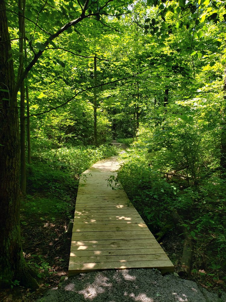 Edison Woods MetroPark: 10183 State Hwy 61, Berlin Heights, OH