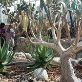 Photo Of Matthaei Botanical Gardens   Ann Arbor, MI, United States. Desert  Flora