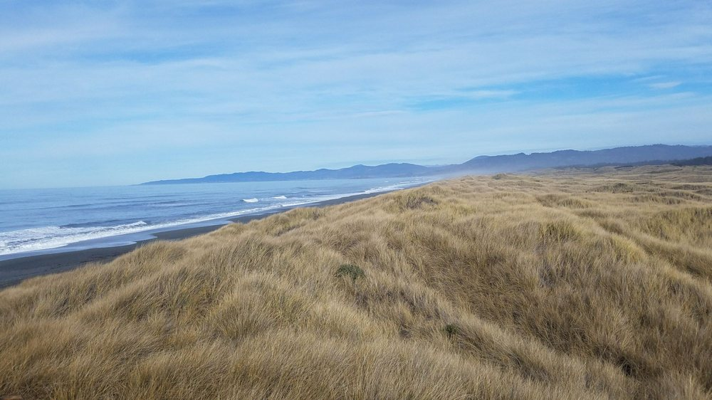 Tolowa Dunes State Park: 1375 Elk Valley Rd, Crescent City, CA
