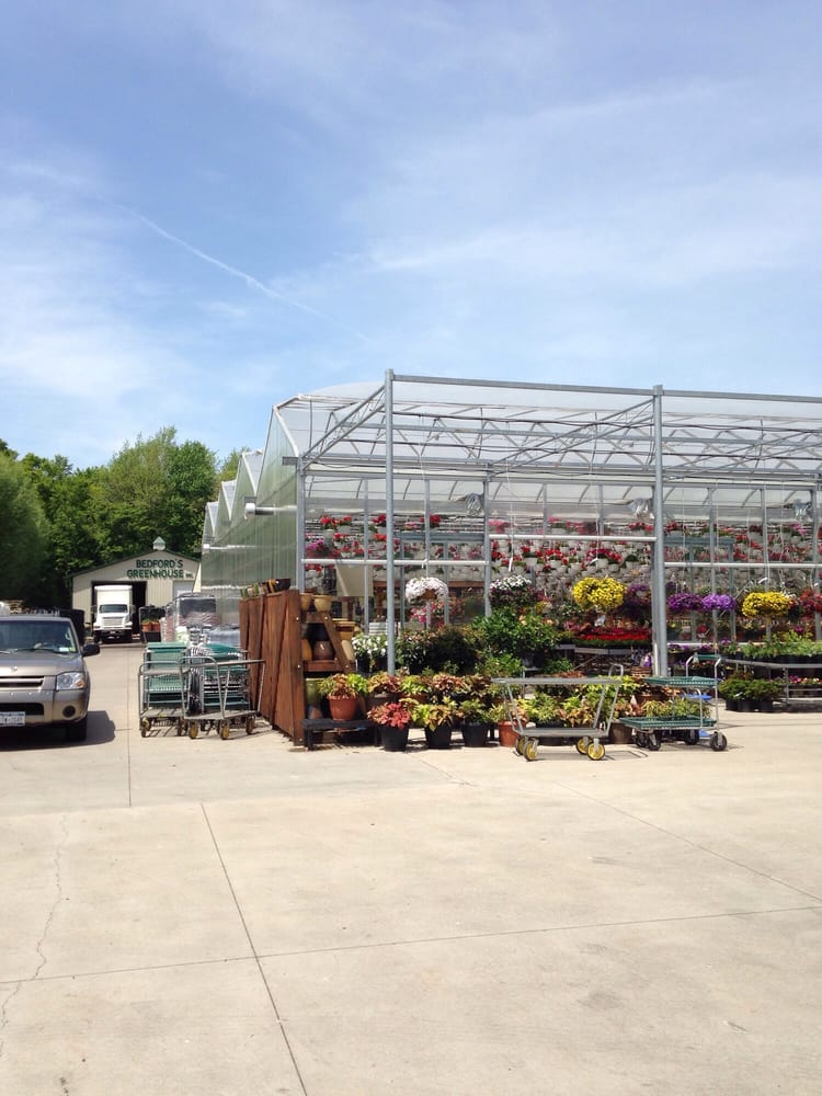 Bedford's Greenhouse: 6820 Cedar St, Akron, NY
