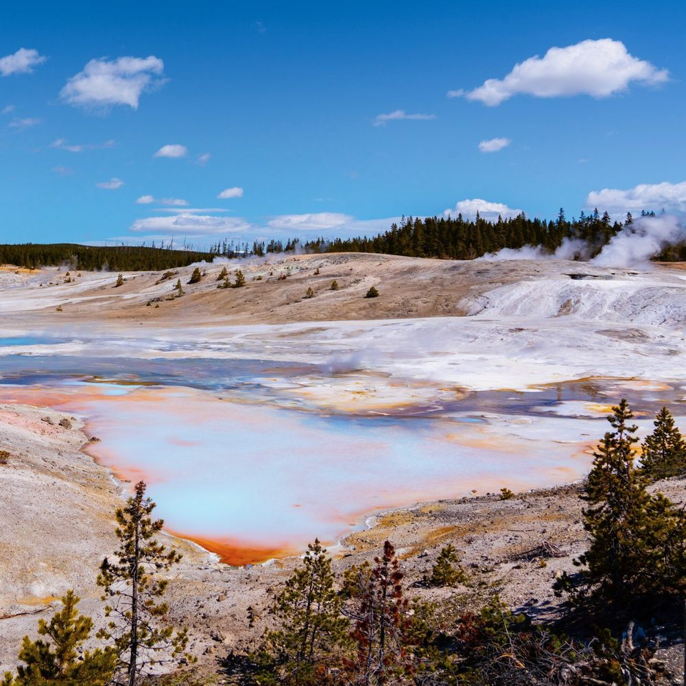Yellowstone Scenic Tours: Big Sky, MT