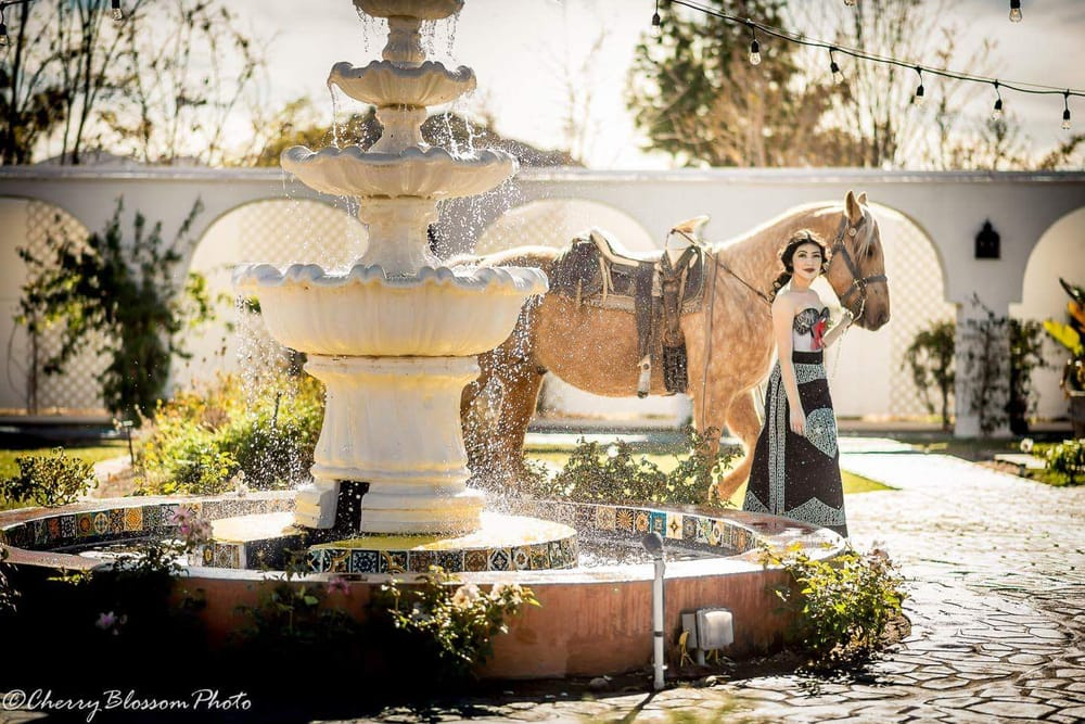Stylish Outdoor Wedding Reception Venues Near Me 16 Cheap: Venues & Event Spaces
