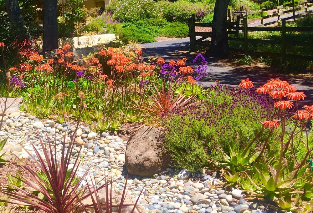 Tapia's Landscaping: 17 Maher Rd, Watsonville, CA