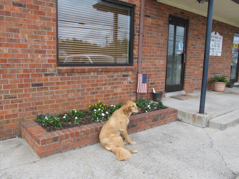 Lavergne Veterinary Clinic: 5046 Murfreesboro Rd, La Vergne, TN