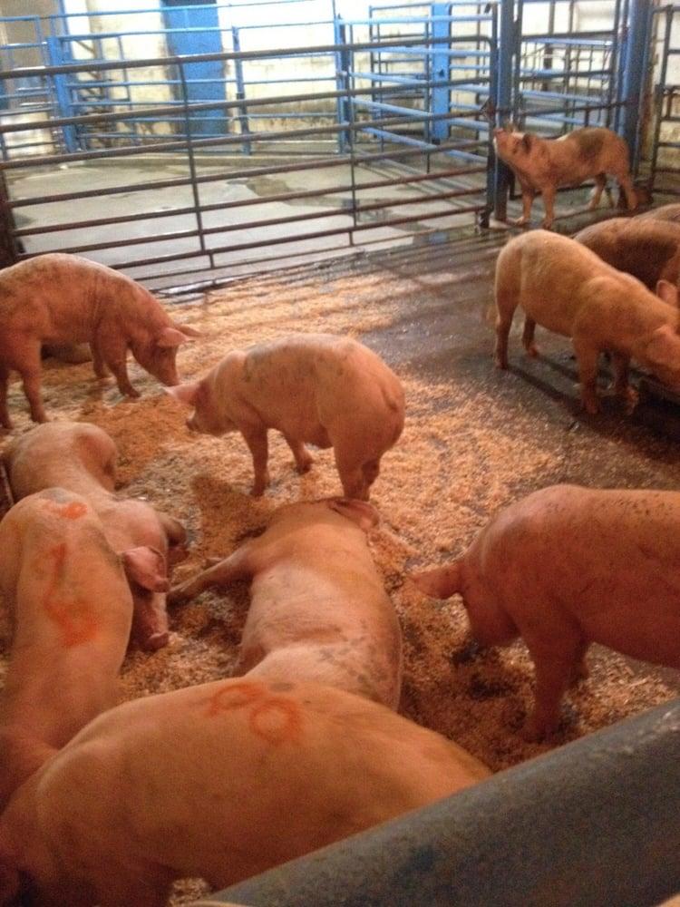 Mekong Fresh Meat: 924 Locker Rd, Mosinee, WI