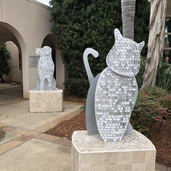 San Diego Humane Society - 279 Photos & 356 Reviews - Animal