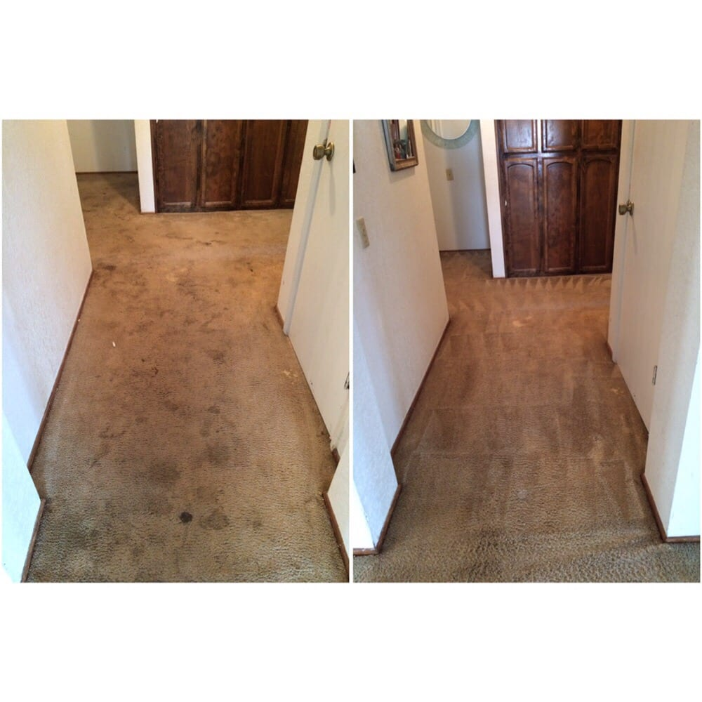 World Class Carpet Cleaning 46 Photos Carpet Cleaning