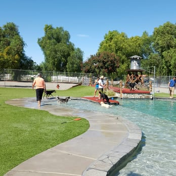 Country Kennels Dog Water Park Murrieta Ca