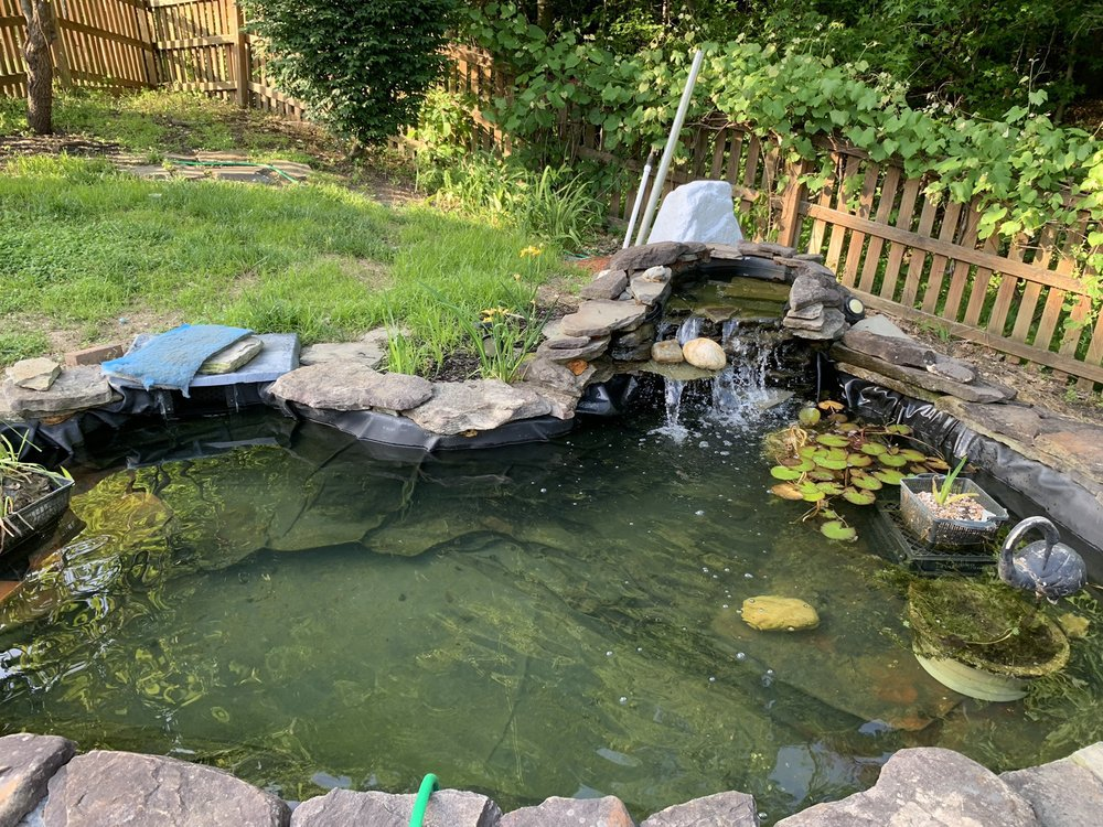 Bella's Pond Services: 12906 Correen Hills Dr, Bristow, VA