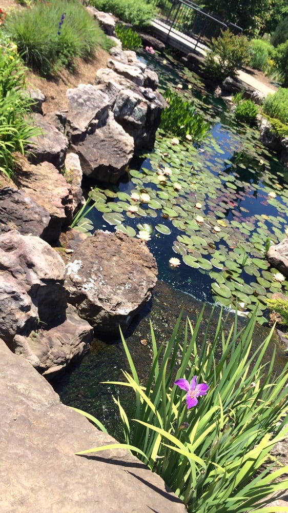 Photos For Botanical Garden Of The Ozarks Yelp