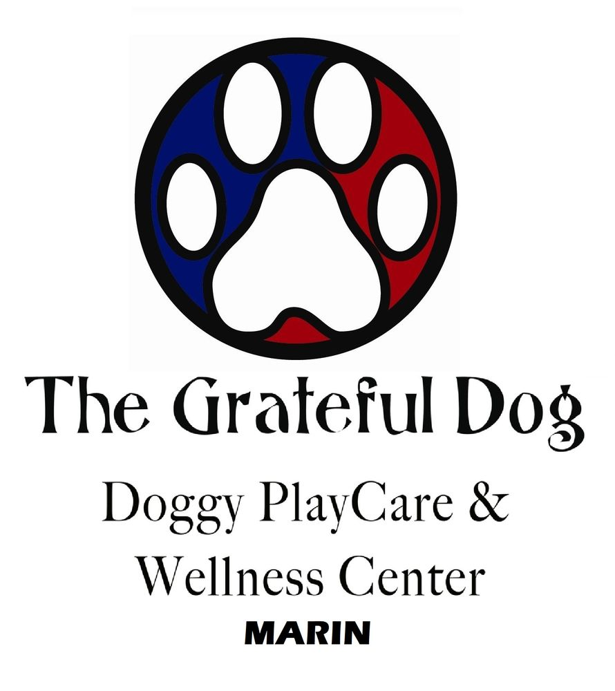 The Grateful Dog: 2094 Redwood Hwy, Greenbrae, CA