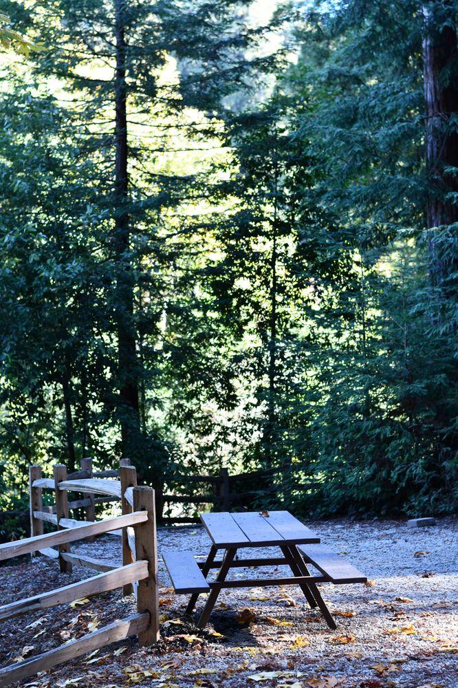 Santa Cruz Redwoods RV Resort: 4980 Hwy 9, Felton, CA