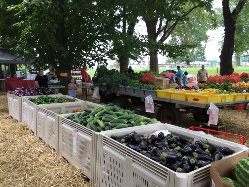 Farmer John's Market: 15520 James Monroe Hwy, Leesburg, VA