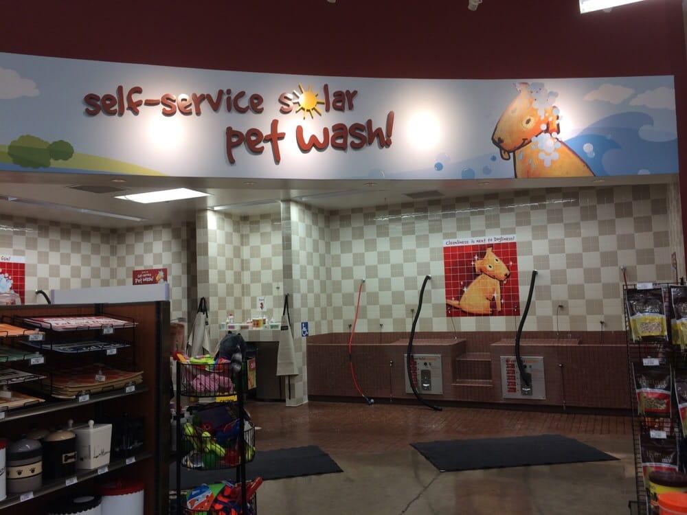 Self service dog wash station yelp photo of pet food express sacramento ca united states self service solutioingenieria Gallery
