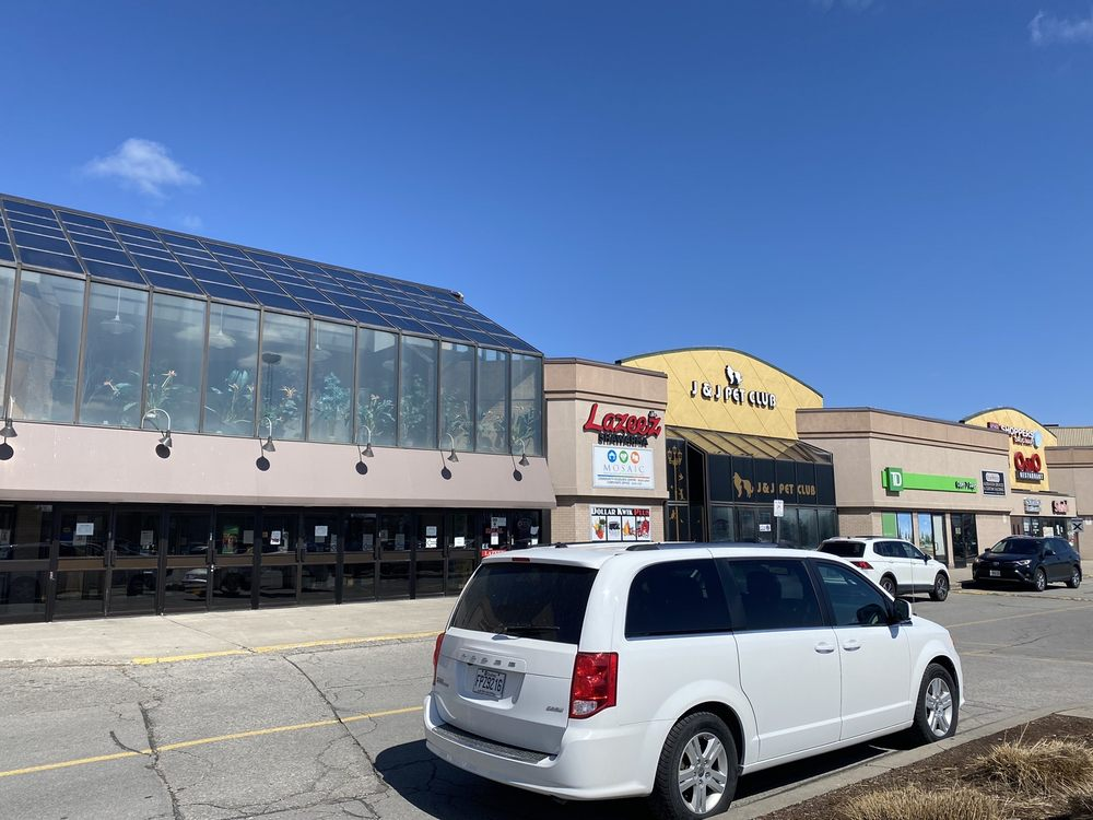 The Shops on Steeles and 404