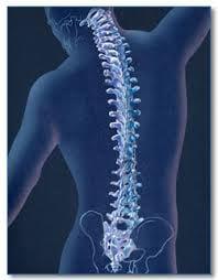 A Better Body Chiropractic: 1408 Pelham Rd S, Jacksonville, AL