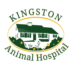 Kingston Animal Hospital