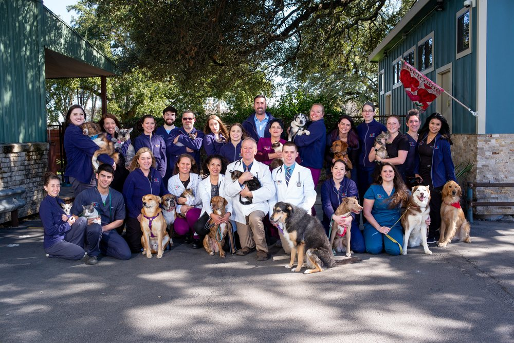 Manchaca Village Veterinary Care: 12117 Manchaca Rd, Austin, TX