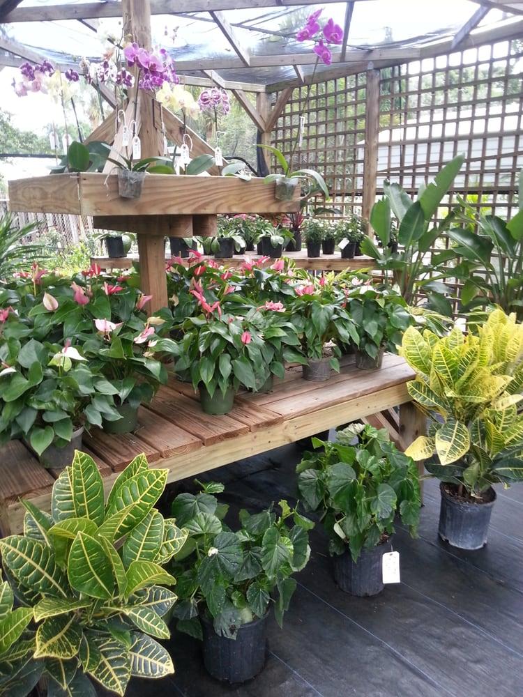 Incroyable Photo Of Boca Delray Plants   Delray Beach, FL, United States. Boca Delray